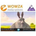 Wowza transcoder add-on