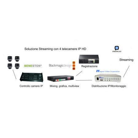 Mini directed streaming kit IP camera