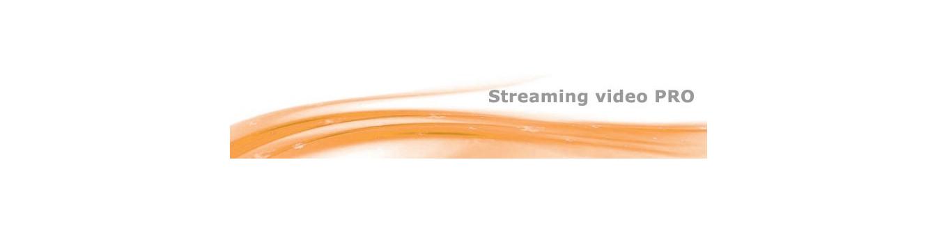 Schede acquisizione video streaming pro